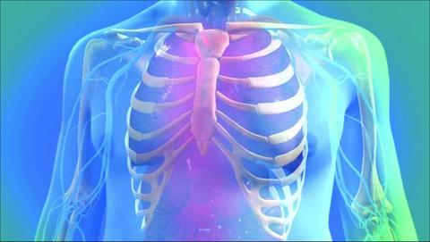 3D Skeletal Rendering - Medical Rendering
